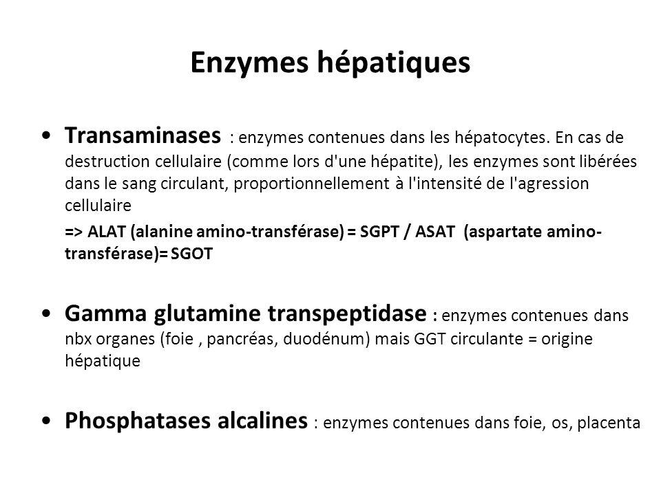 Enzymes hépatiques Transaminases : enzymes contenues dans les hépatocytes. En cas de destruction cellulaire (comme lors d'une hépatite), les enzymes s