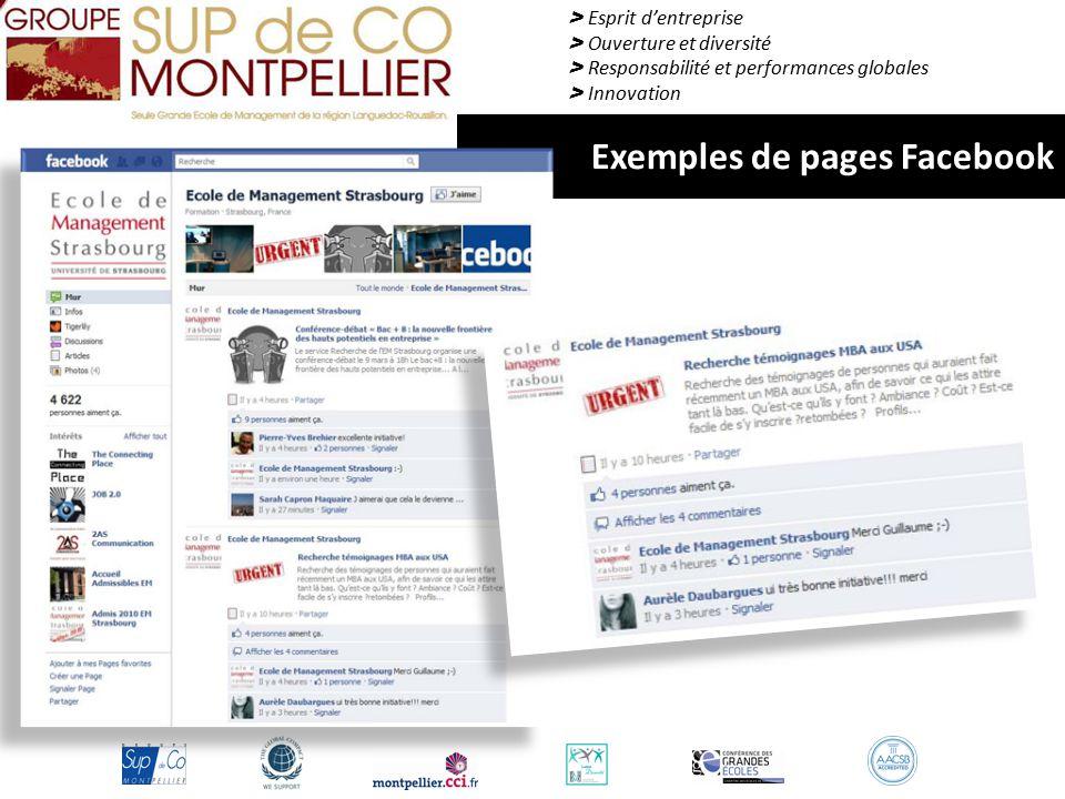 > Esprit d'entreprise > Ouverture et diversité > Responsabilité et performances globales > Innovation Exemples de pages Facebook