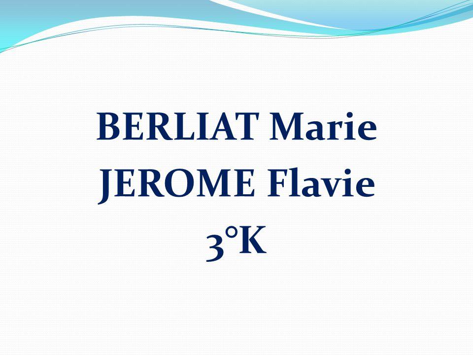 BERLIAT Marie JEROME Flavie 3°K