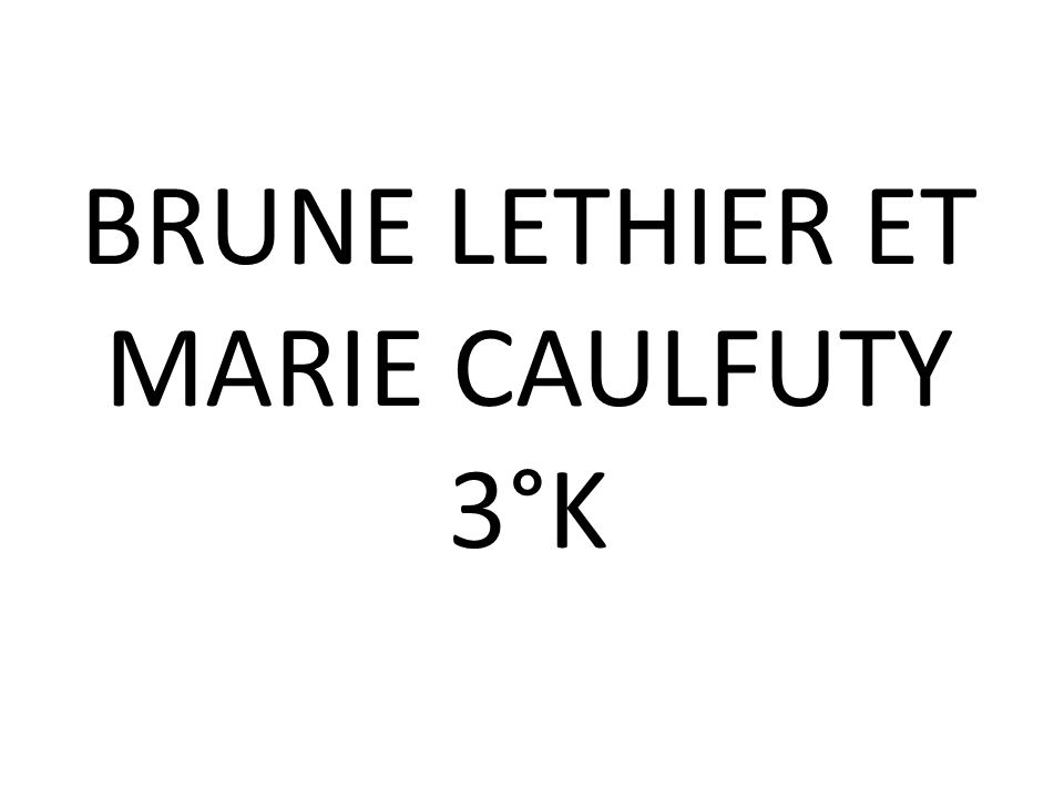 BRUNE LETHIER ET MARIE CAULFUTY 3°K