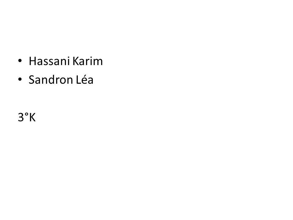 Hassani Karim Sandron Léa 3°K
