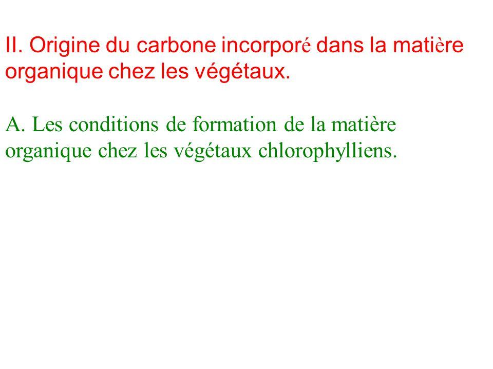II.Origine du carbone incorpor é dans la mati è re organique chez les végétaux.