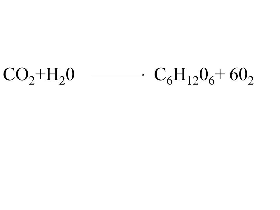 CO 2 +H 2 0 C 6 H 12 0 6 + 60 2