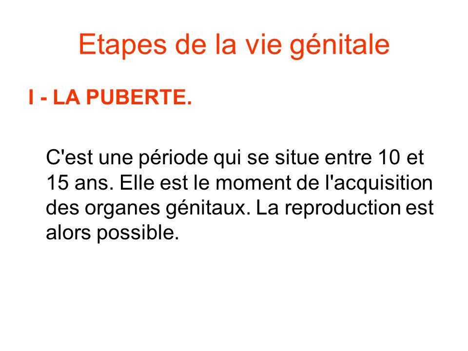 Etapes de la vie génitale I - LA PUBERTE.C est une période qui se situe entre 10 et 15 ans.