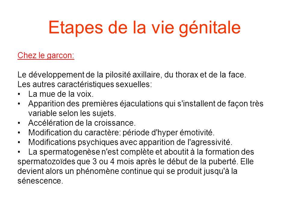 Etapes de la vie génitale Chez le garcon: Le développement de la pilosité axillaire, du thorax et de la face.