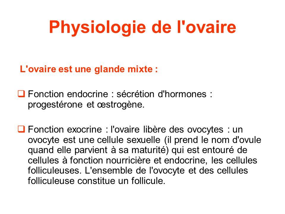 Physiologie de l ovaire L ovaire est une glande mixte :  Fonction endocrine : sécrétion d hormones : progestérone et œstrogène.