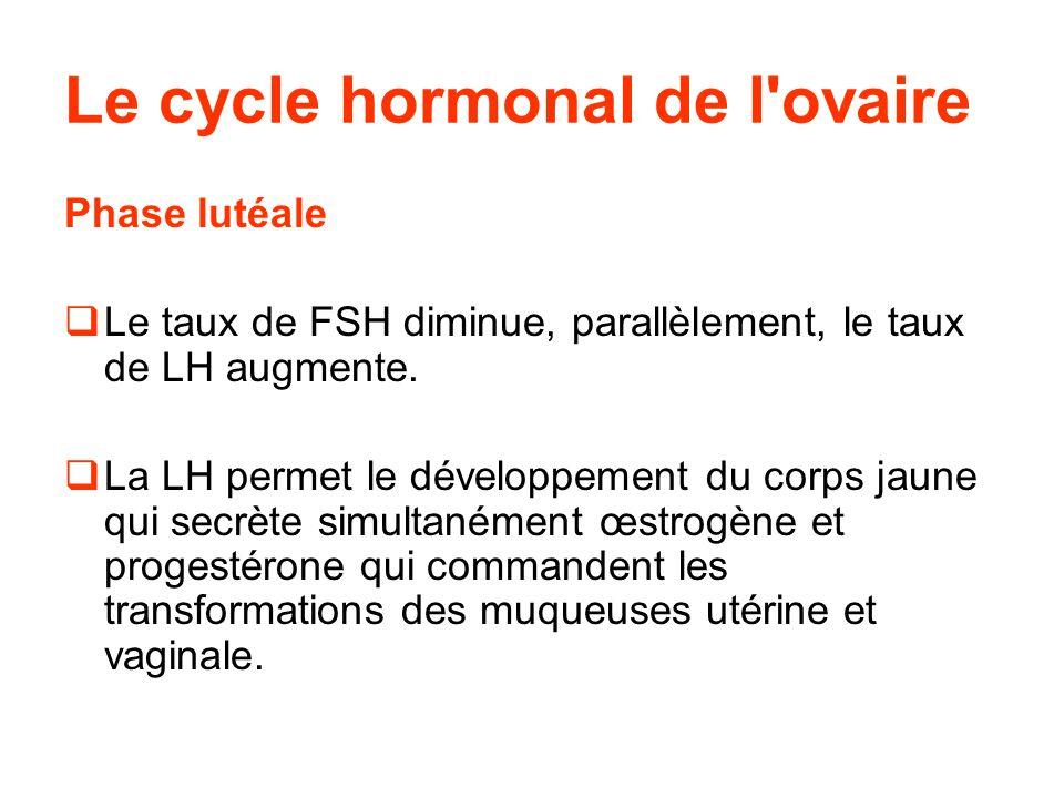 Fin du cycle:  En l absence de fécondation, il y a une dégénérescence du corps jaune et donc une diminution du taux de progestérone.