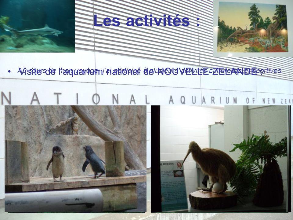Les activités : Au cours de mon voyage, j'ai participé à plusieurs activités culturelles et sportives. Visite de l'aquarium national de NOUVELLE-ZELAN