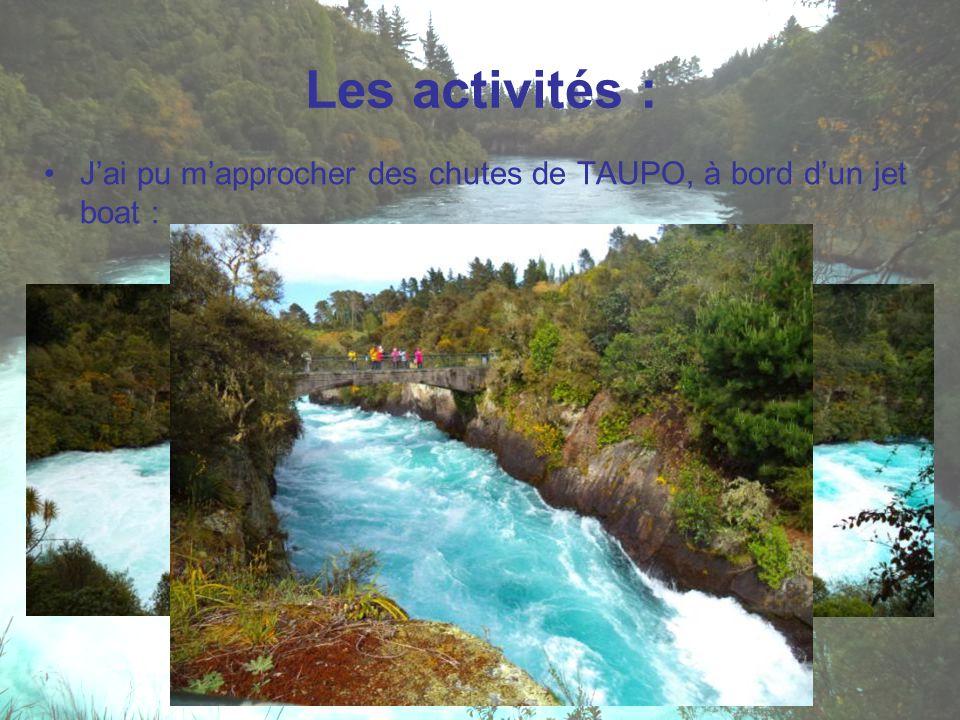 J'ai pu m'approcher des chutes de TAUPO, à bord d'un jet boat : Les activités :