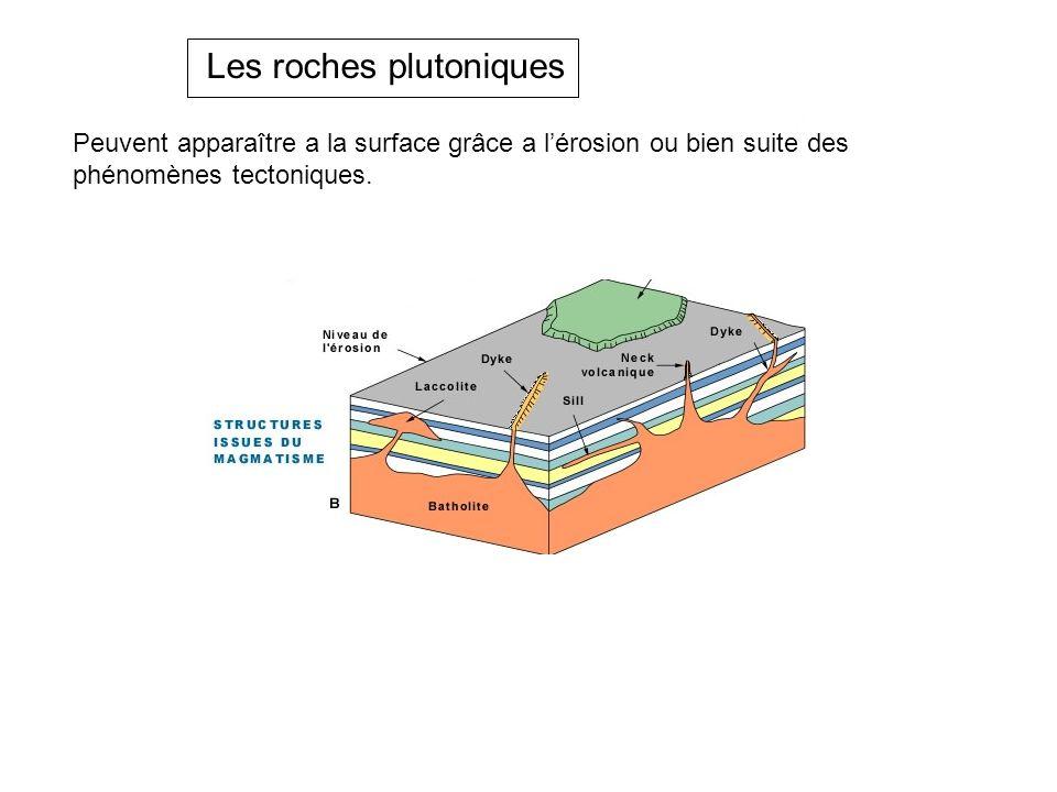 Peuvent apparaître a la surface grâce a l'érosion ou bien suite des phénomènes tectoniques. Les roches plutoniques