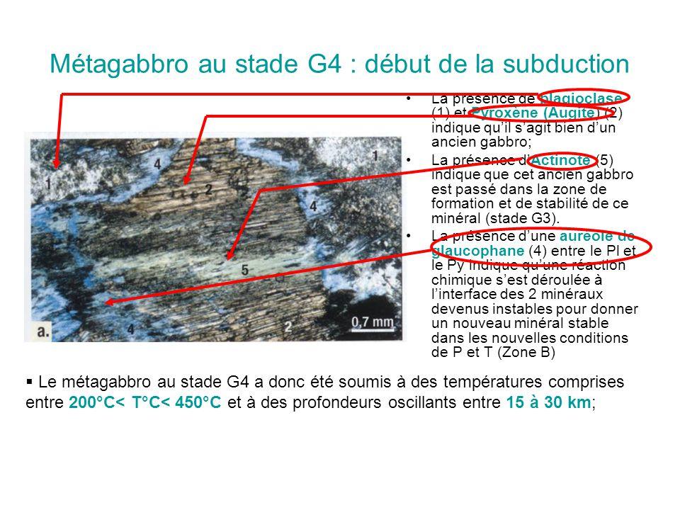 Métagabbro au stade G4 : début de la subduction La présence de plagioclase (1) et Pyroxène (Augite) (2) indique qu'il s'agit bien d'un ancien gabbro;