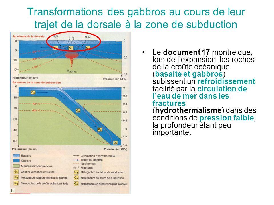 Transformations des gabbros au cours de leur trajet de la dorsale à la zone de subduction Le document 17 montre que, lors de l'expansion, les roches d