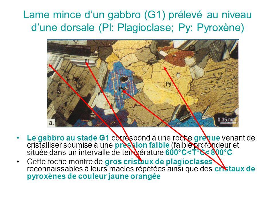 Lame mince d'un gabbro (G1) prélevé au niveau d'une dorsale (Pl: Plagioclase; Py: Pyroxène) Le gabbro au stade G1 correspond à une roche grenue venant