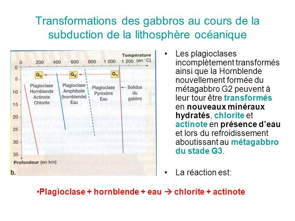 Transformations des gabbros au cours de la subduction de la lithosphère océanique Les plagioclases incomplètement transformés ainsi que la Hornblende