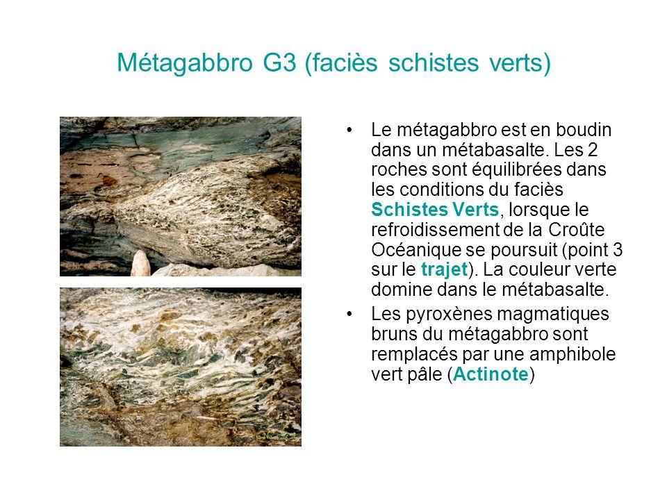 Métagabbro au stade G4 : début de la subduction La présence de plagioclase (1) et Pyroxène (Augite) (2) indique qu'il s'agit bien d'un ancien gabbro; La présence d'Actinote (5) indique que cet ancien gabbro est passé dans la zone de formation et de stabilité de ce minéral (stade G3).