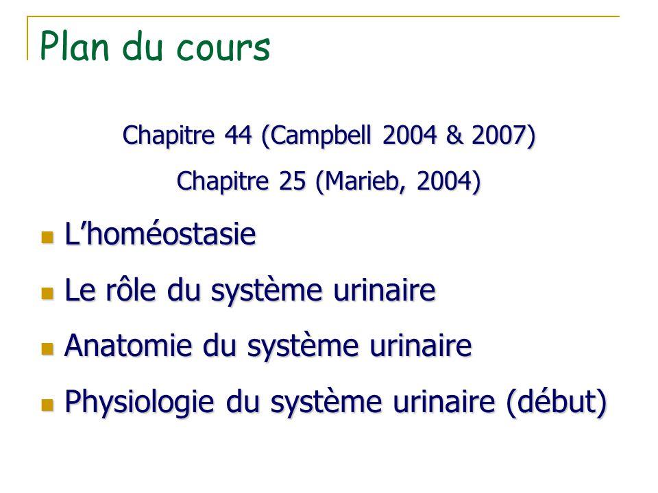 Plan du cours Chapitre 44 (Campbell 2004 & 2007) Chapitre 25 (Marieb, 2004) L'homéostasie L'homéostasie Le rôle du système urinaire Le rôle du système