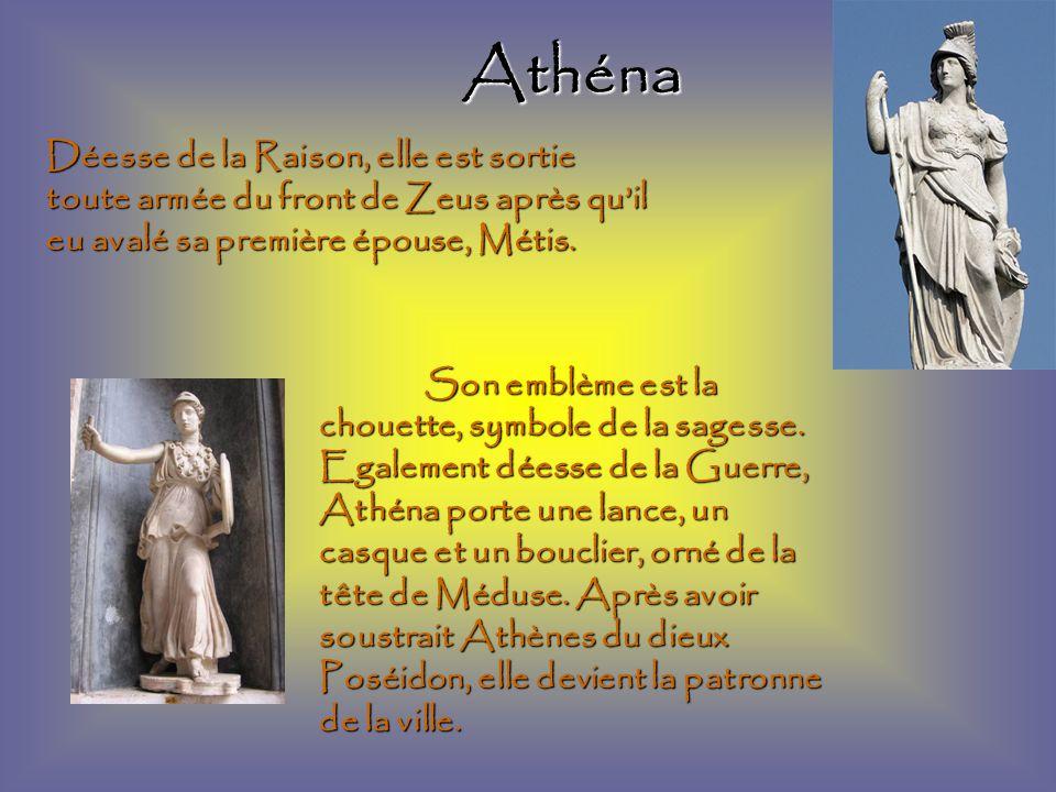Athéna Son emblème est la chouette, symbole de la sagesse.