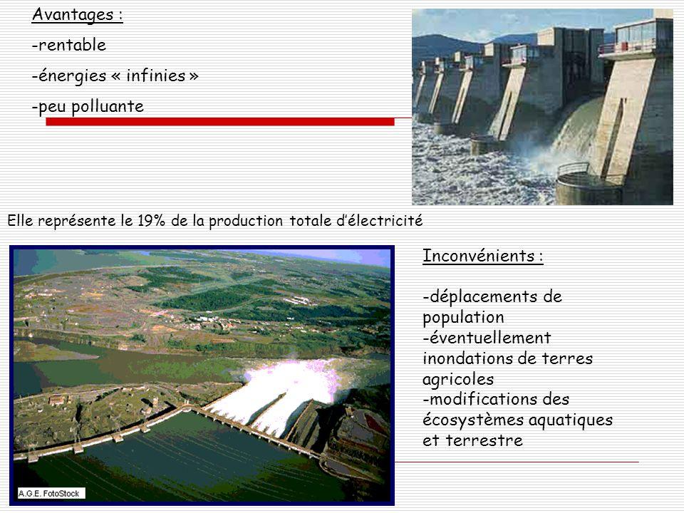 Elle représente le 19% de la production totale d'électricité Avantages : -rentable -énergies « infinies » -peu polluante Inconvénients : -déplacements