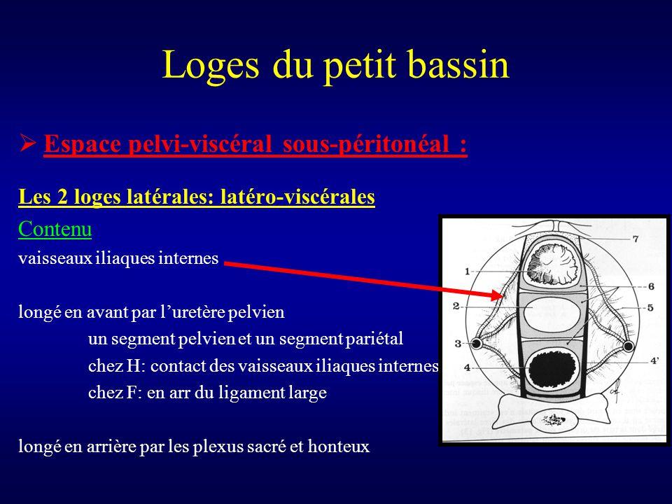 Loges du petit bassin  Espace pelvi-viscéral sous-péritonéal : Les 2 loges latérales: latéro-viscérales Contenu vaisseaux iliaques internes longé en