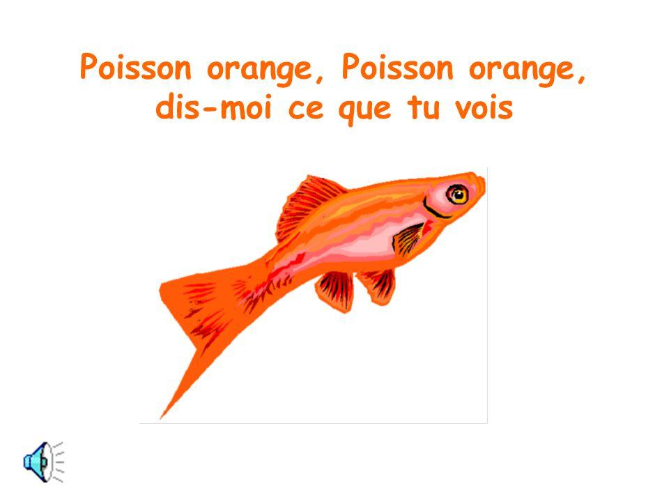 Je vois un poisson orange qui regarde par ici