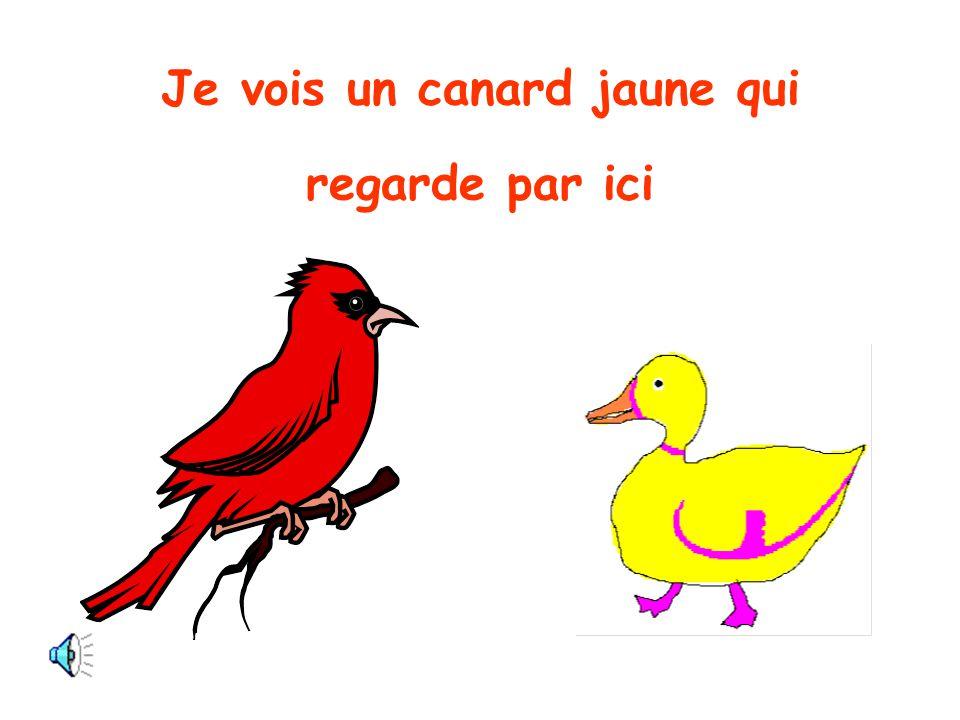Oiseau rouge, Oiseau rouge, dis moi ce que tu vois