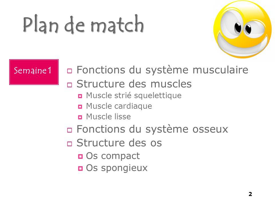 Plan de match  Fonctions du système musculaire  Structure des muscles  Muscle strié squelettique  Muscle cardiaque  Muscle lisse  Fonctions du système osseux  Structure des os  Os compact  Os spongieux Semaine 1 2