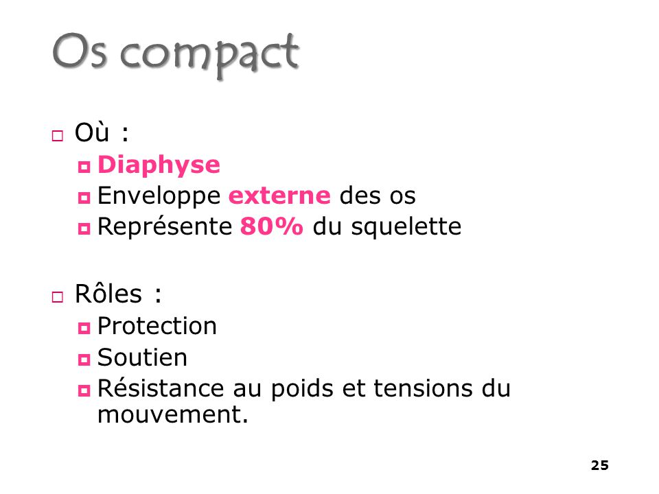 Os compact  Où :  Diaphyse  Enveloppe externe des os  Représente 80% du squelette  Rôles :  Protection  Soutien  Résistance au poids et tensions du mouvement.