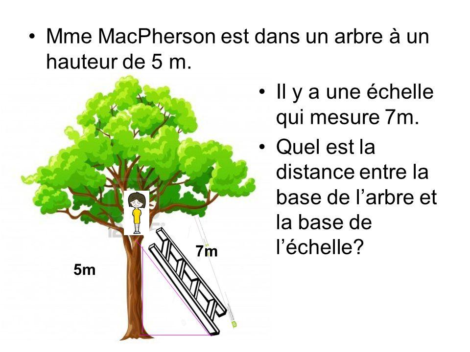Mme MacPherson est dans un arbre à un hauteur de 5 m. Il y a une échelle qui mesure 7m. Quel est la distance entre la base de l'arbre et la base de l'