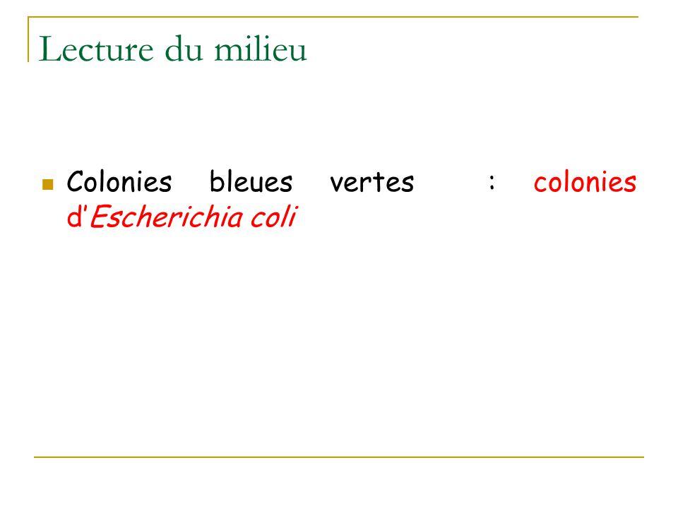 Lecture du milieu Colonies bleues vertes : colonies d'Escherichia coli
