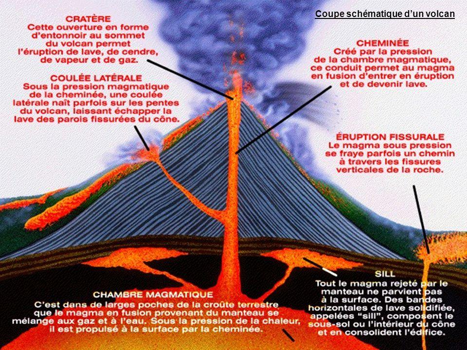 On classe habituellement les volcans terrestres en plusieurs types selon leurs comportements éruptifs.