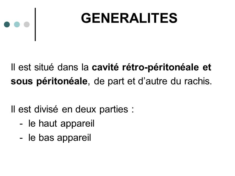 GENERALITES Il est situé dans la cavité rétro-péritonéale et sous péritonéale, de part et d'autre du rachis. Il est divisé en deux parties : - le haut