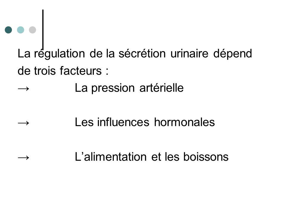 Composition de l'urine pour 1 l : → 950 g d'eau → 50 g de matières dissoutes dont 30 g de matières organiques (urée, acide urique, créatinine) et 20 g de sels minéraux (sodium, potassium, calcium, chlorures).
