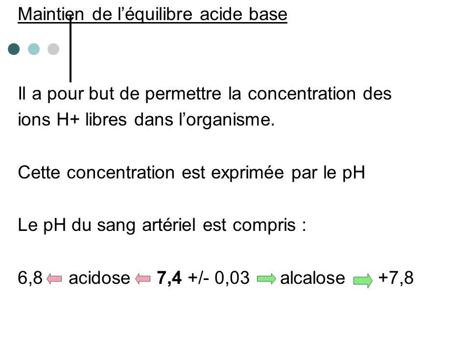 Il existe 2 types d'ions H+ - volatils : provenant du métabolisme cellulaire et éliminés par les poumons - fixes : provenant aussi du métabolisme cellulaire mais apportés par l'alimentation, éliminés par le rein.
