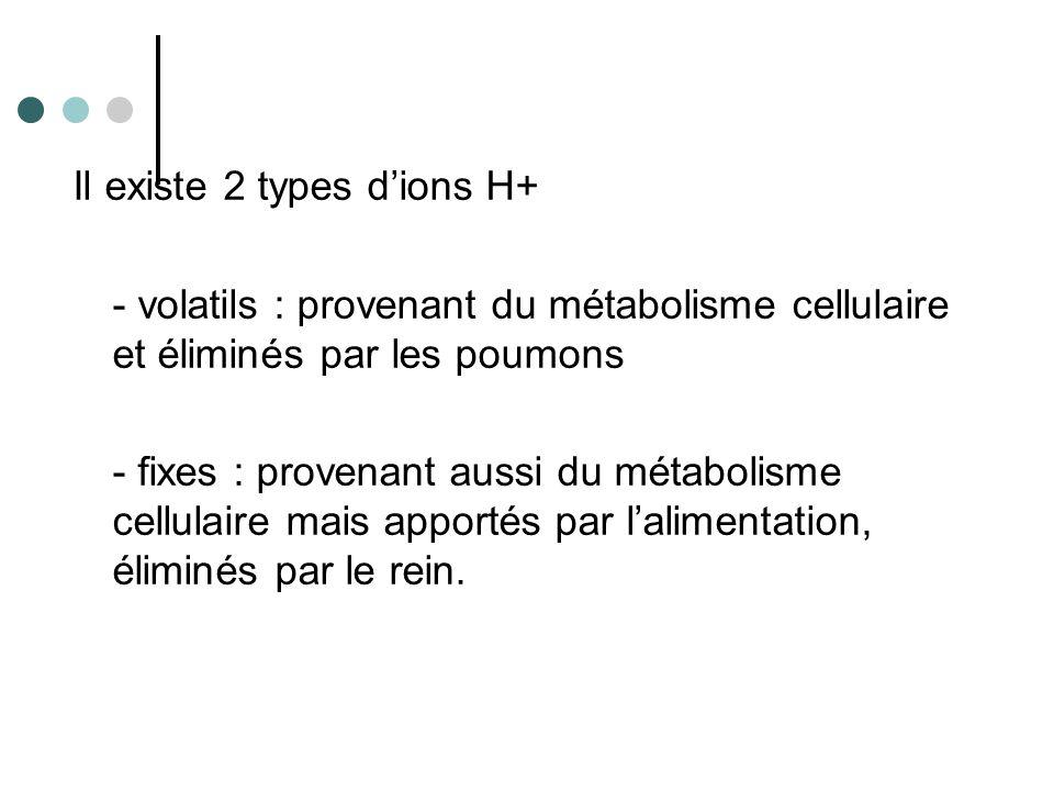 Les ions H+ sont échangés contre les ions Na+ au niveau du tube distal.