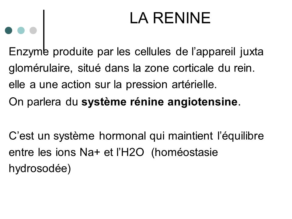 RENINE ENZYME DU REIN ANGIOTENSINOGENE (ENZYME DU FOIE) ANGIOTENSINOGENE I ENZYME DE CONVERSION (ENZYME DES POUMONS) ANGIOTENSINOGENE II ↑ SECRETION ALDOSTERONE