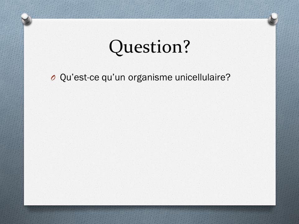 Question? O Qu'est-ce qu'un organisme unicellulaire?