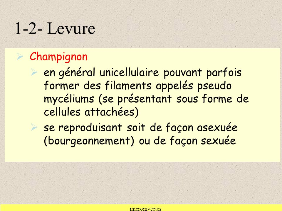 micromycètes 1-2- Levure  Champignon  en général unicellulaire pouvant parfois former des filaments appelés pseudo mycéliums (se présentant sous forme de cellules attachées)  se reproduisant soit de façon asexuée (bourgeonnement) ou de façon sexuée