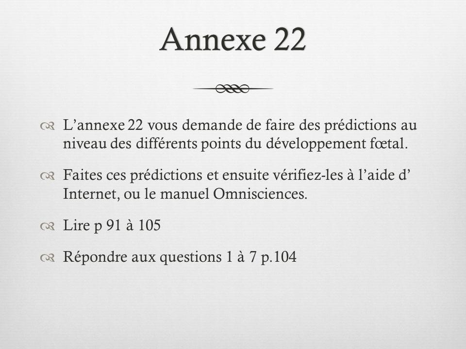 Annexe 22Annexe 22  L'annexe 22 vous demande de faire des prédictions au niveau des différents points du développement fœtal.