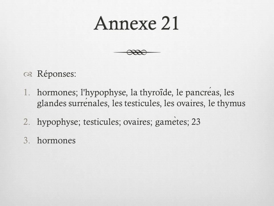 Annexe 21Annexe 21  Réponses: 1.hormones; l hypophyse, la thyroi ̈ de, le pancreas, les glandes surrenales, les testicules, les ovaires, le thymus 2.hypophyse; testicules; ovaires; game ̀ tes; 23 3.hormones