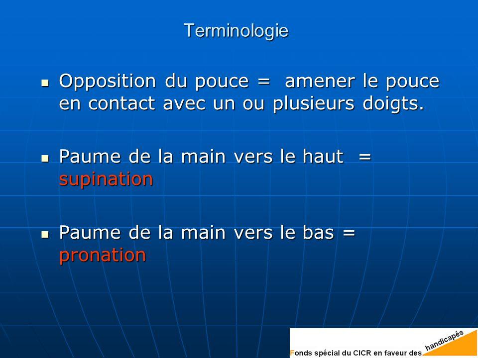 Terminologie Opposition du pouce = amener le pouce en contact avec un ou plusieurs doigts.