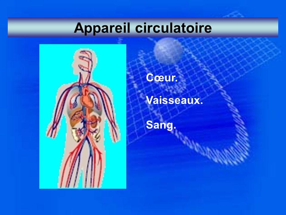 Appareil circulatoire Cœur. Vaisseaux. Sang.