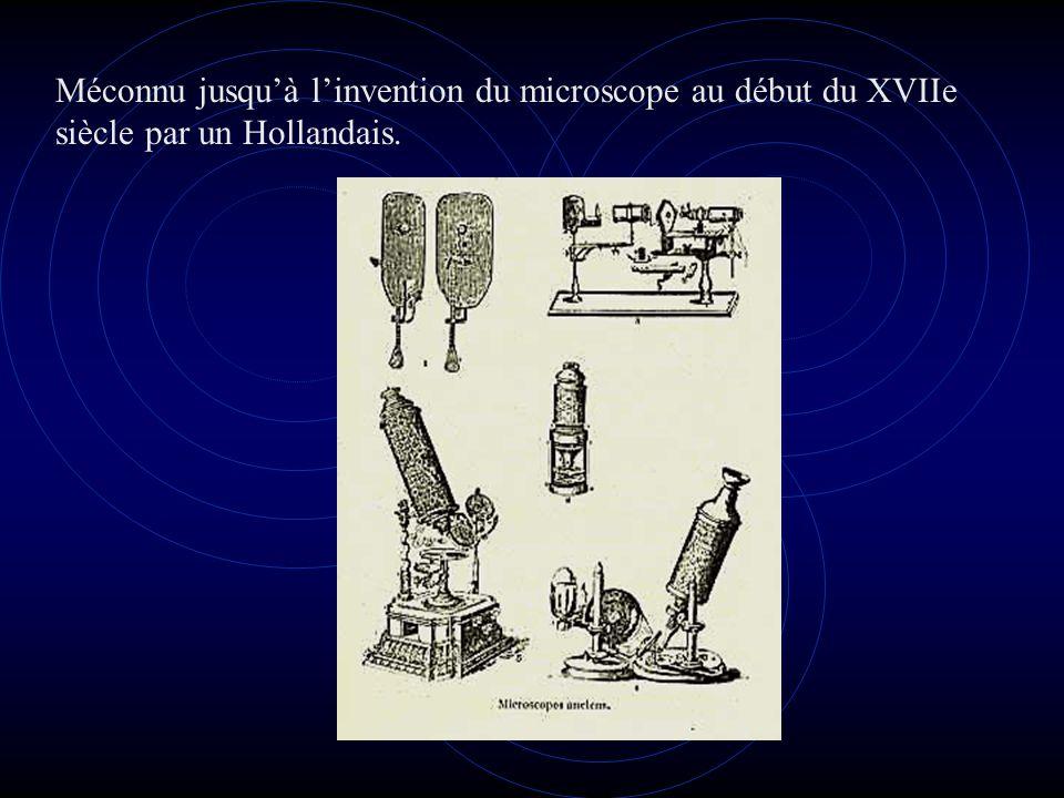 En fait l'étude des Bactéries ne débuta qu'au cours de la 2ème moitié du XIXe siècle et c'est Louis PASTEUR qui est le véritable fondateur de la microbiologie.