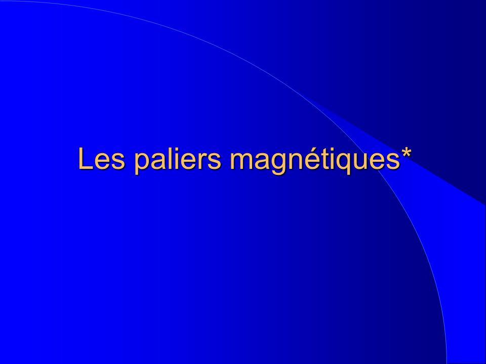 Les paliers magnétiques*