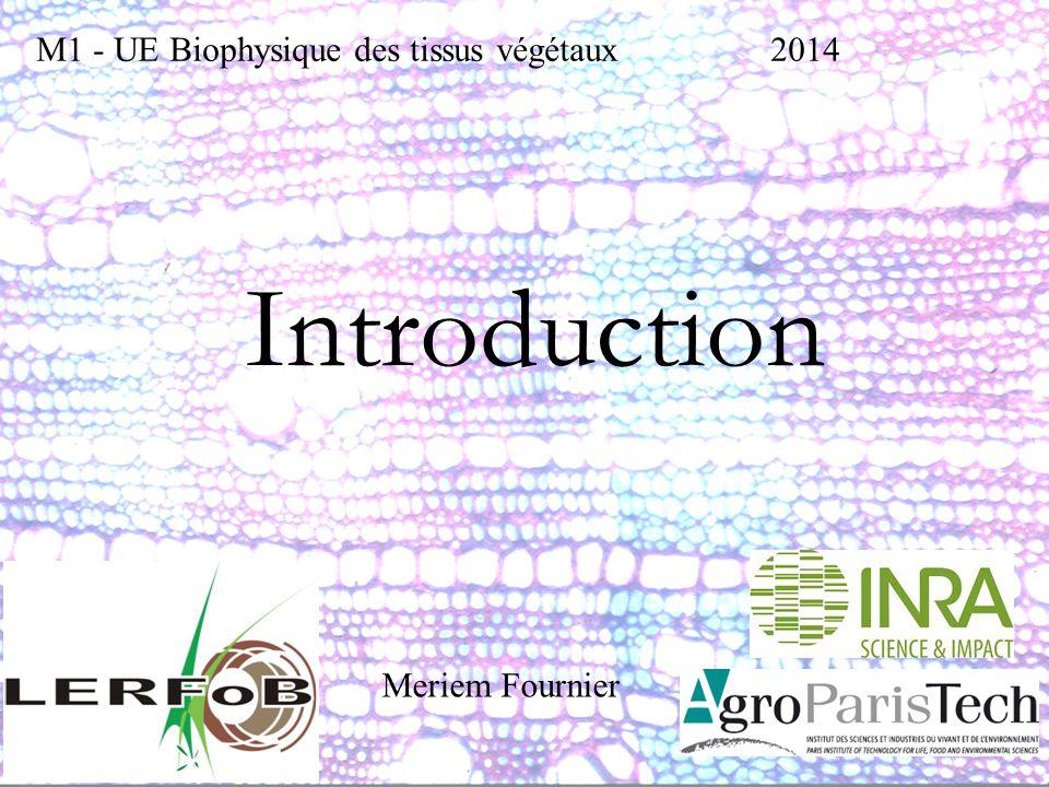 Introduction m1 ue biophysique des tissus végétaux2014 meriem
