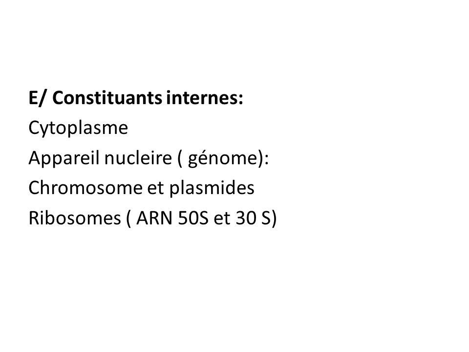 E/ Constituants internes: Cytoplasme Appareil nucleire ( génome): Chromosome et plasmides Ribosomes ( ARN 50S et 30 S)