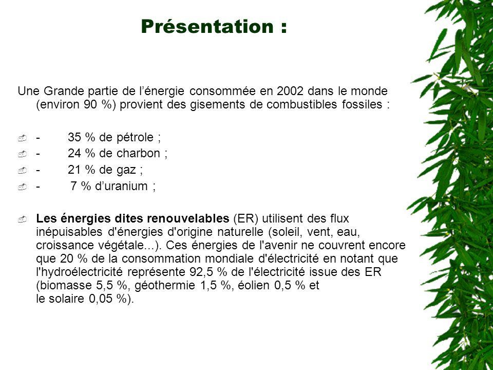 Présentation : Une Grande partie de l'énergie consommée en 2002 dans le monde (environ 90 %) provient des gisements de combustibles fossiles :  - 35