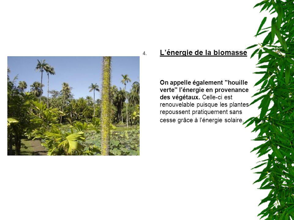 4. L'énergie de la biomasse On appelle également