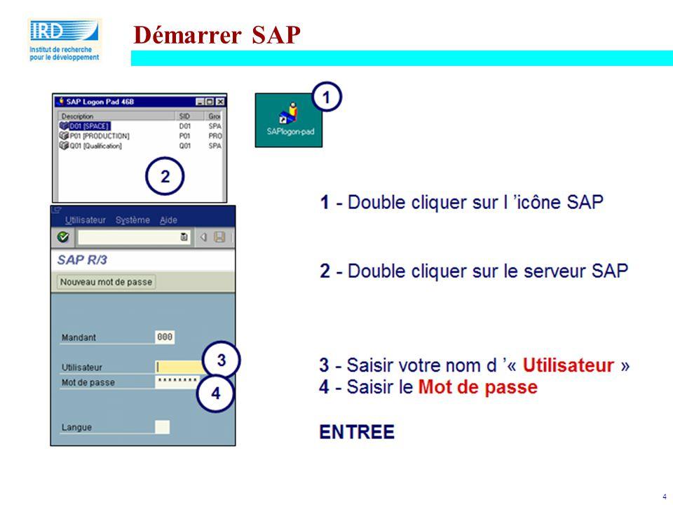 4 Démarrer SAP