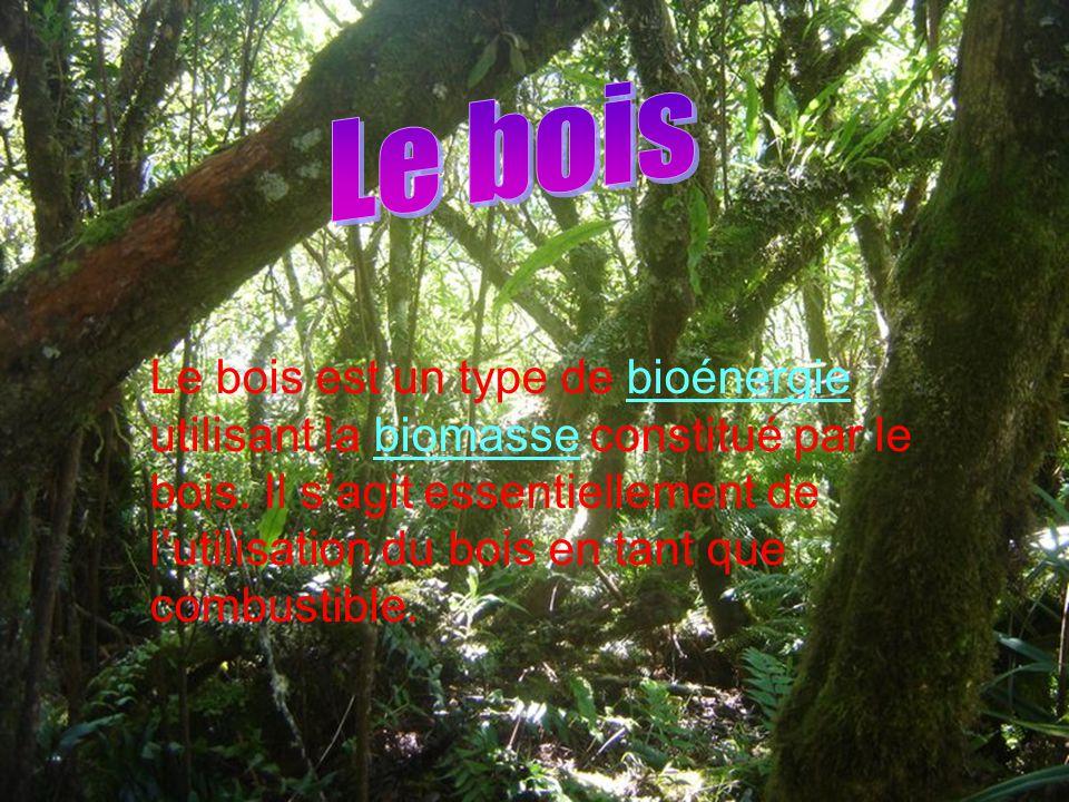 Le bois est un type de bioénergie utilisant la biomasse constitué par le bois. Il s'agit essentiellement de l'utilisation du bois en tant que combusti