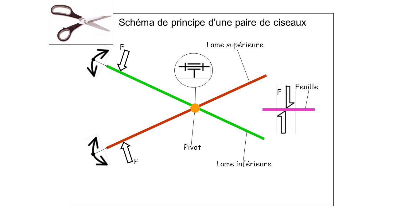 Lame supérieure Lame inférieure Pivot F F Feuille F Schéma de principe d'une paire de ciseaux